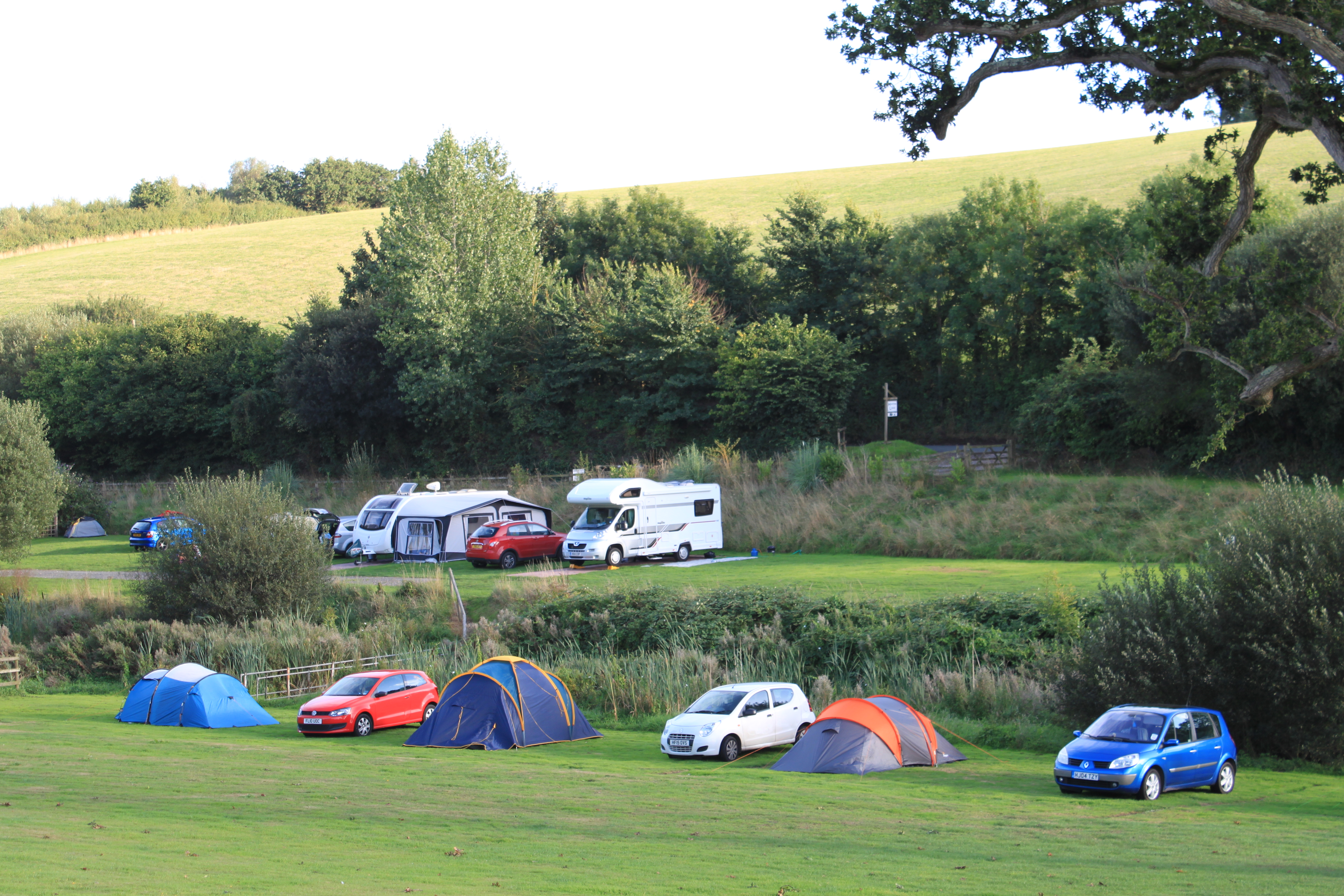 south devon camping site tents starcross dawlish kenton powderham